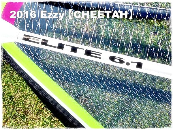 2016 CHEETAH 写真
